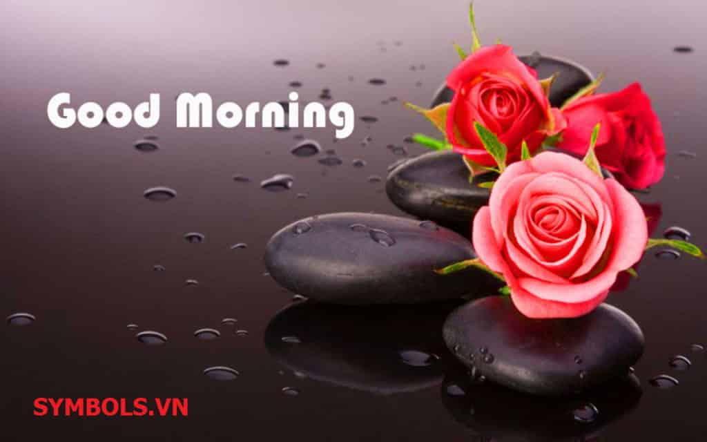 Tiếp thêm năng lượng với trọn bộ stt chào ngày mới hay và ý nghĩa